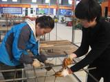 李佳老师在实践操作 (2)